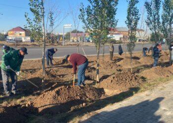 Коммунальный субботник прошел в Нур-Султане: сколько участвовало людей и что удалось сделать 3