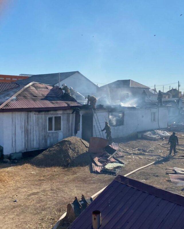 В Актобе пожарные вытащили из огня щенка